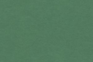 MDF Grün FORESCOLOR, Zuschnitt